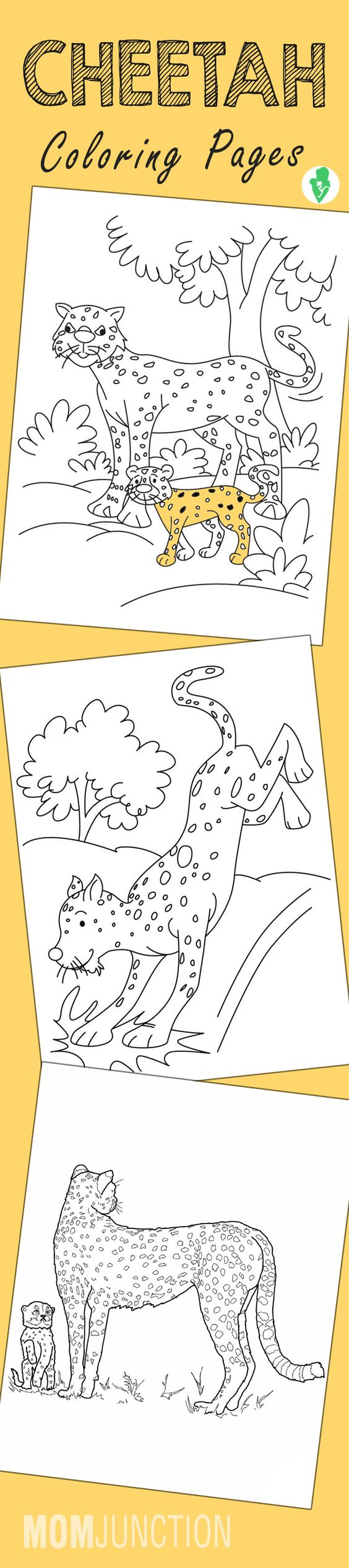 25 best cheetah coloring pages for your little ones cheetahs