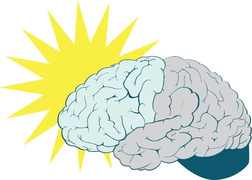 Executive Functions and You!
