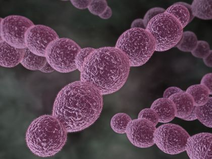 Sepsis is a life-threatening illness. How your body responds to a bacterial infection is what usually causes Sepsis. What happens is your body's immune system kicks into overdrive, and this overwhelms normal processes in your blood.