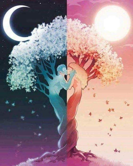 Ellos eran tan distintos... él era frío como el invierno y ella emitía calor como el verano pero cada vez que se abrazaban formaban una primavera perfecta. .. Busquen ese complemento ese algo que los estabilice sentimentalmente. .. #amordletras  una cuenta para expresar pequeños y hermosos pensamientos siguenos   #amorpropio #amor #vida #novios #tumblr#libros #frases #novio #novia #reflexion #happy #you #parejas #tuyyo #colombia #mama #amordemama