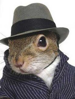 Mafia squirrel. (Photoshopped, I hope)