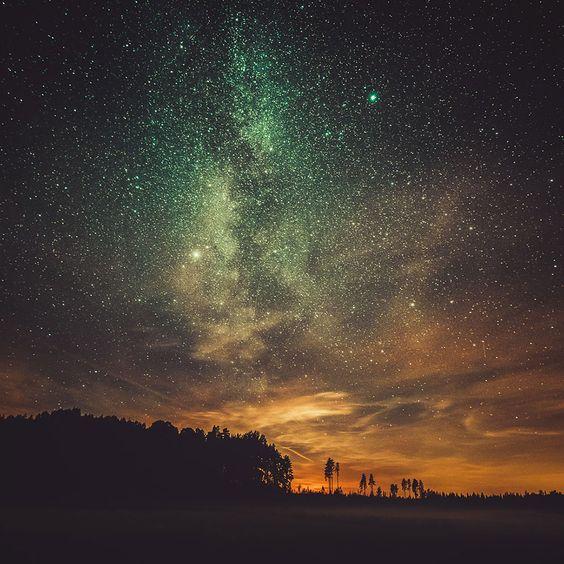 Mikko Lagerstedt toma impresionantes fotos de la naturaleza