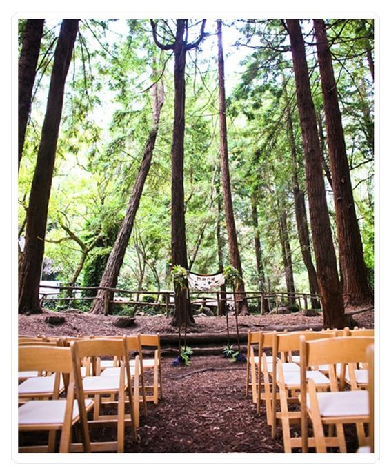 7. A Lovely Location #modcloth #wedding . A wedding under the tall trees in a forest clearing, the spring sun shining.