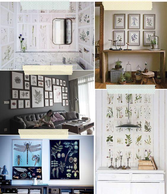 Inspiración: paredes decoradas con láminas botánicas antiguas