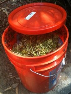 Composting using a 5 gallon bucket.