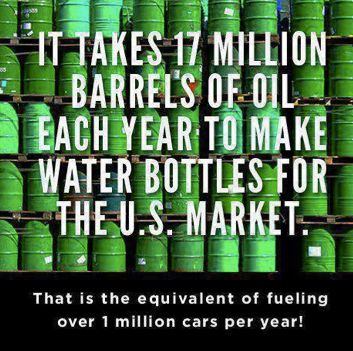 Ditch single use plastic water bottles if you haven't already. An awesome thing you can change today, to do seriously good things for your budget AND our beautiful planet and its wildlife