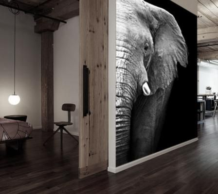 Decoratie aan de muur fotobehang zwart wit woning pinterest zoeken olifanten en interieur - Deco schilderij slaapkamer jongen ...