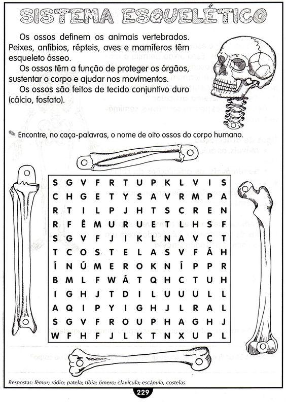 Atividades variadas 4º ano do ensino fundamental www.ensinar-aprender.blogspot.com007
