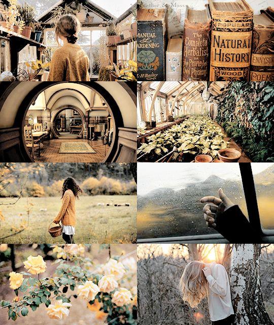 dear mr potter, hogwarts aesthetics - hufflepuff
