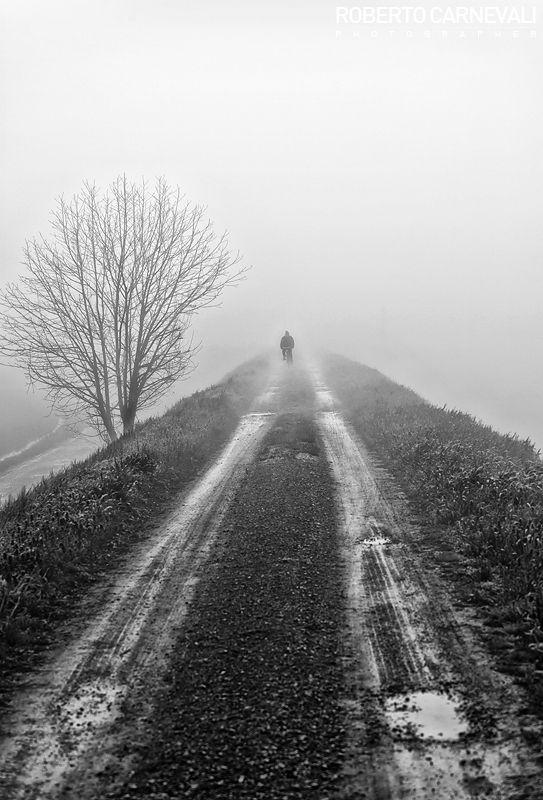 Through the fog - (Attraverso la nebbia)   Italian landscape photography of foggest morning (Modena, Italy) - © Roberto Carnevali