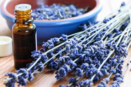 The Top 8 Uses For Lavender Oil