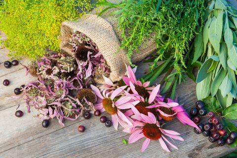 Fresh herbs from the garden...