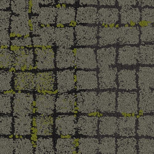 Moss Summary Commercial Carpet Tile Interface Floor Design