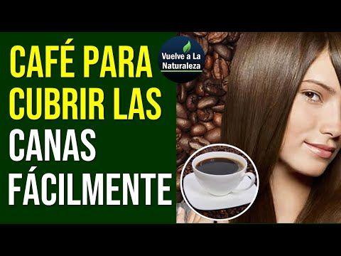 Cafe Para Las Canas Es Un Tinte Natural Para Cubrir Las Canas Y Pintar El Cabello Yo Tinte Natural Para Canas Tintes Para Canas Como Teñir El Cabello