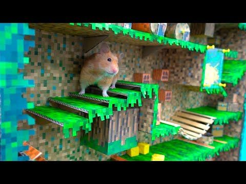 Hamster Vertical Maze Minecraft World Youtube In 2020