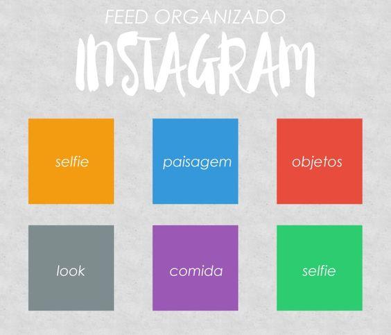 feed organização:
