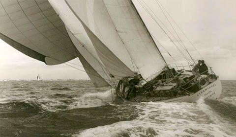 Stormvogel, 1961