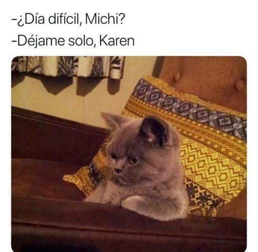 Memes De Karen Y Su Gato Segunda Parte Memes En Espanol La Mejor Recopilacion De Memes Lo Mas Viral D Memes Memes De Animales Divertidos Memes Divertidos