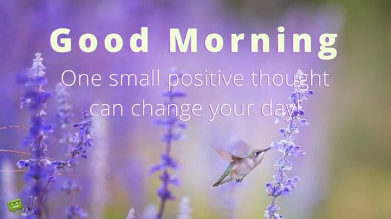 Good Morning. One small positive thought can change your day.: