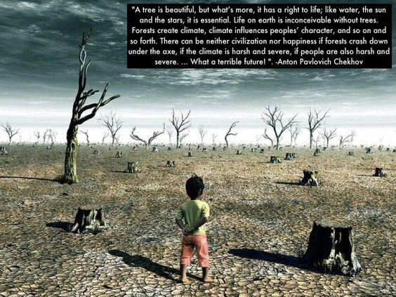 Image result for earth destruction by humans