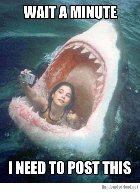 Very Funny Memes Facebook : Funny memes about girls girl meme facebook selfie fail