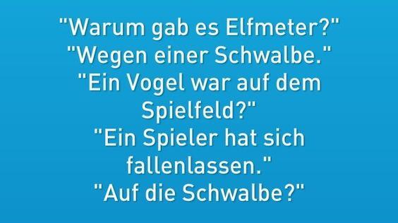 #schwalbe