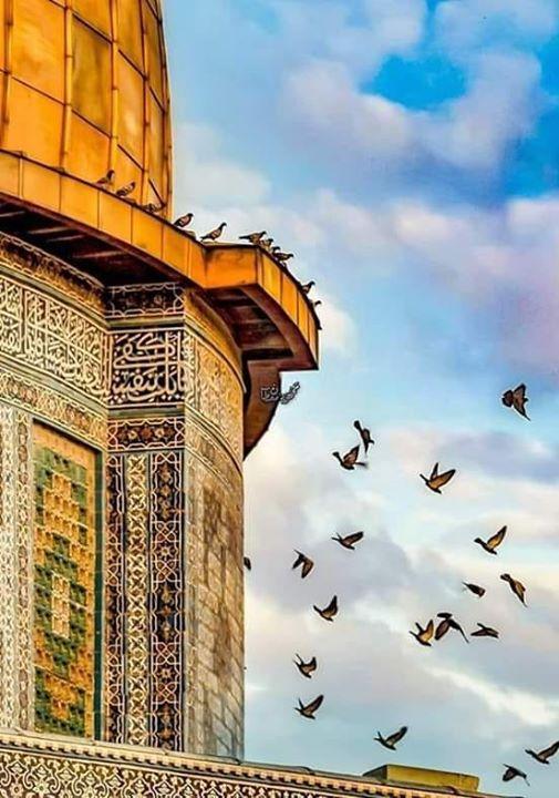 ان الحروف تموت حين تقال و الصمت في حرم الجمال جمال Wonders Of The World Tower Leaning Tower