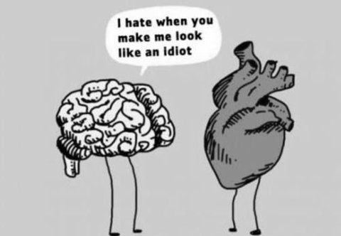 haha: Stupid Heart, Funny Things, That S, My Life, My Heart, So True, Funny Stuff