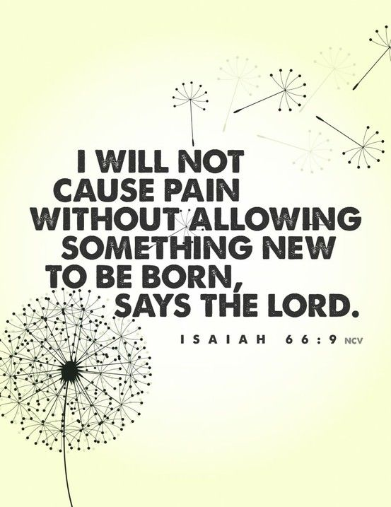 Thank you Lord for being so faithful in my life and for allowing something new to be born in my life.