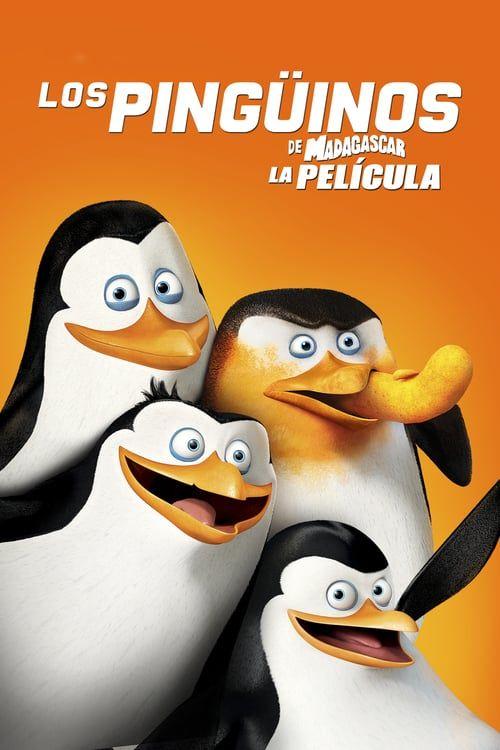 Hd Los Pinguinos De Madagascar 2014 Pelicula Completa En Espanol Latino Online Pinguinos De Madagascar Madagascar La Pelicula Pelicula Madagascar