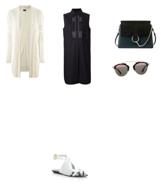 """""""Untitled #2625"""" by anamaria-zgimbau ❤ liked on Polyvore featuring Chloé, H&M, Alexander Wang, Derek Lam and Christian Dior"""