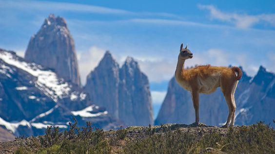Argentine & Chili, la Patagonie à sa guise