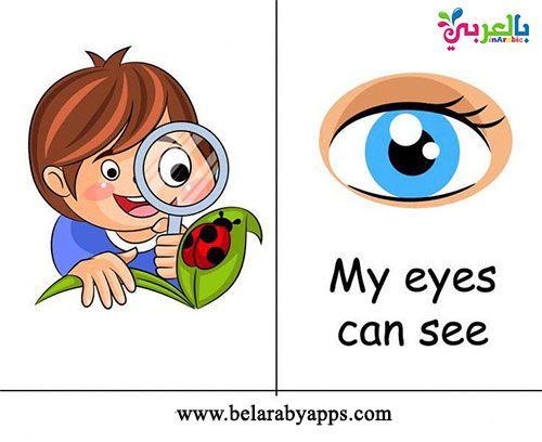 بطاقات تعليم الأطفال الحواس الخمس بالانجليزي وسيله تعليميه عن الحواس بالعربي نتعلم Mario Characters Mario My Eyes