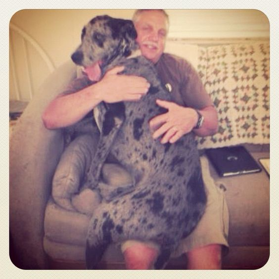 Great uncle with his great Dane niece.