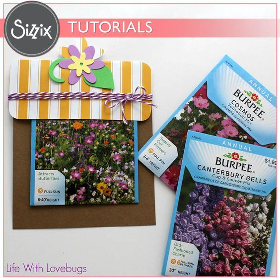Sizzix Tutorial | Spring Seed Packet Gift by Monika Baptista