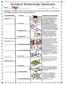 Printables Ecology Worksheets For High School different types of and student on pinterest i made this worksheet to give my students examples the symbiosis for our ecology unit you can lecture show them