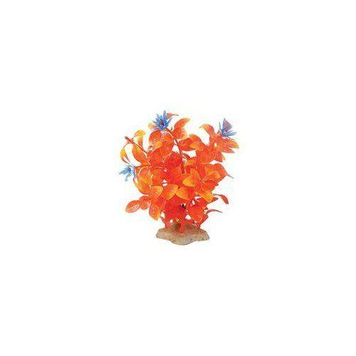 Pure Aquatic Natural Elements Flaming Ludwigia Aquarium