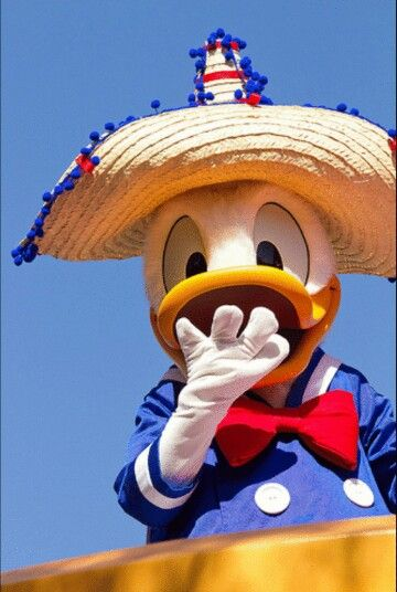 Donald Duck♡