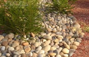 High Tech High San Marcos | Decorative Stone Solutions