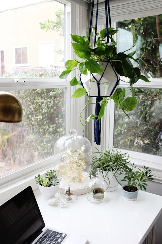 Sometimes I put miniature chairs in glass domes and hang plants in macrame plant hangers (from Osh hardware in LA for $7…best find of the year). The vessell is from Dwell Studio