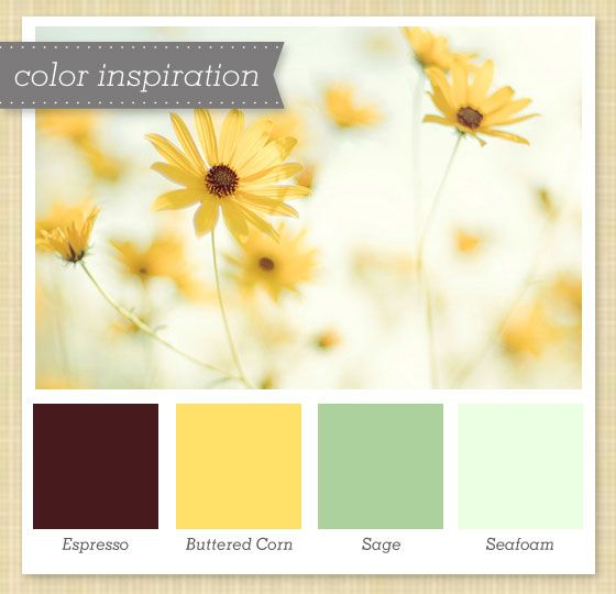 brown yellow green flower color palette