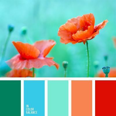 Turquoise Color Combinations 8 - fancydecors