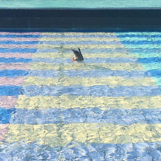 """local。  皆が働いる日は休めて  皆が休みの日は休めない。  #僕は潜水が得意だった #komazawa #tokyo  #駒沢センチメンタルズ"" Photo taken by @koichiraw on Instagram, pinned via the InstaPin iOS App! http://www.instapinapp.com (05/22/2015)"