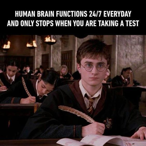 The Funniest Memes Of The Day That Are Absolutely Hilarious 17 Pics Awed Owl Harry Potter Memes Hilarious Funny Memes Memes