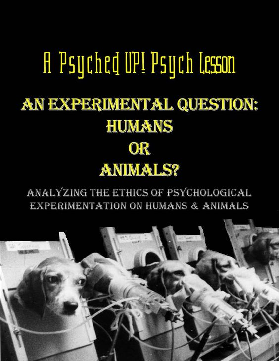 animal testing in psychological research is Story of animal research failure prevails for nearly all chronic  60 human tumor cell lines, to replace unreliable animal testing  animals' complex psychological, social, and behavioral needs nonhuman primates are regularly housed in small, solitary.