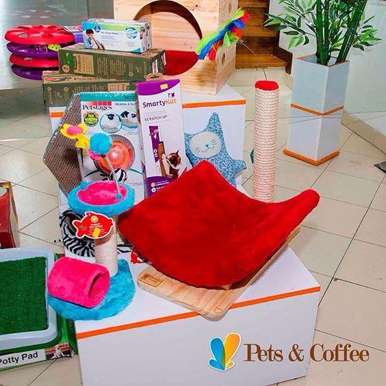 ¡Ven a visitarnos! En nuestra tienda #PetsAndCoffee Tenemos todo lo que estás buscando, y mucho más, para tu gatito, ¡te esperamos! en El Poblado. Calle 10 A #40-52 #PetShop  www.petscoffee.com