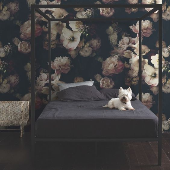 so expensive but I love it - dark floral wallpaper: