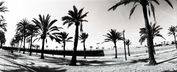 Palma de Mallorca  Foto de Sarah Encabo Gonzalez