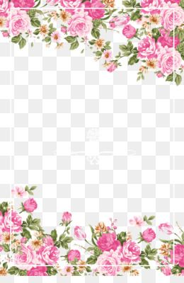 Free Download Wedding Invitation Paper Flower Rose Pink Pink Roses Border Png 1134 1701 And 1 57 Mb Como Pintar Rosas Pinturas De Flores Flores Pintadas