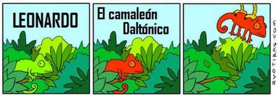 LAS HISTORIAS DE LEONARDO...